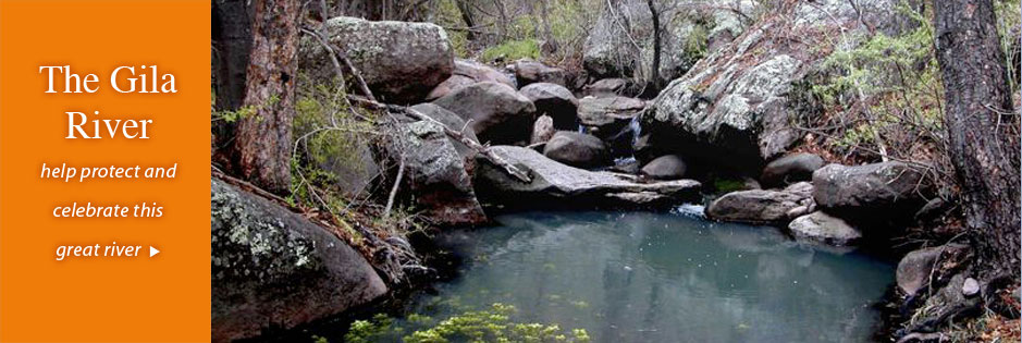 The Gila River: help protect and celebrate this great river